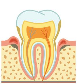 Parodontologie - Zahnarzt München